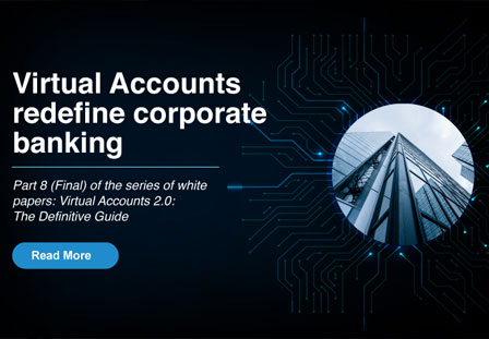 Virtual Accounts 2.0 The Definitive Guide DOWNLOAD
